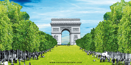 Nature-Capitale-Gad-Weil-Laurence-Medioni